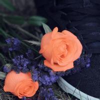固执的玫瑰花